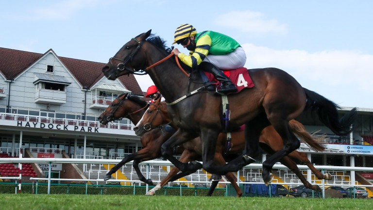 Haydock stages the three-day Sprint Cup meeting at the start of September
