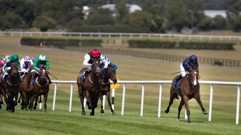 More Beautiful (right) bids to bounce back from a disappointing Queen Mary run