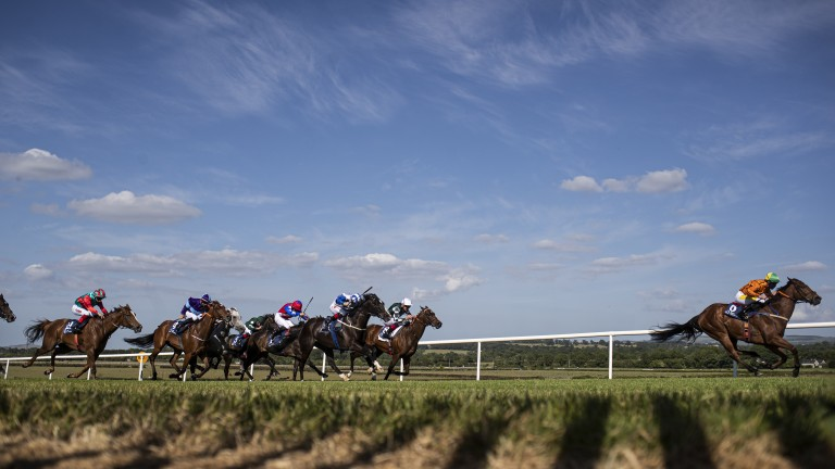 Sceptical (orange silks, leader): suffered a fatal injury on the gallops on Tuesday