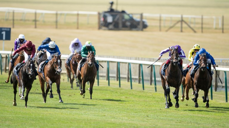 Pinatubo (blue, right) finishes third behind Kameko in the 2,000 Guineas