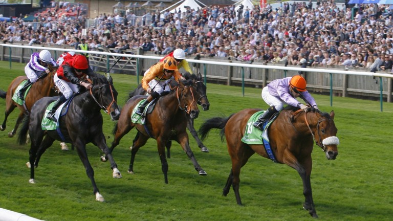 Makfi storms clear in the 2,000 Guineas of 2010
