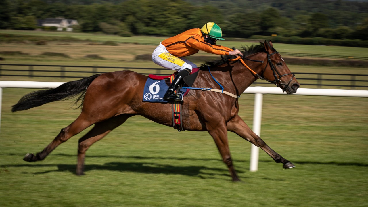 Star sprinter Sceptical diverted to Diamond Jubilee and made new ...