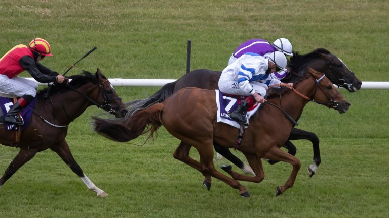 Ten Year Ticket (7) gains Listed honours at Leopardstown under Kevin Manning