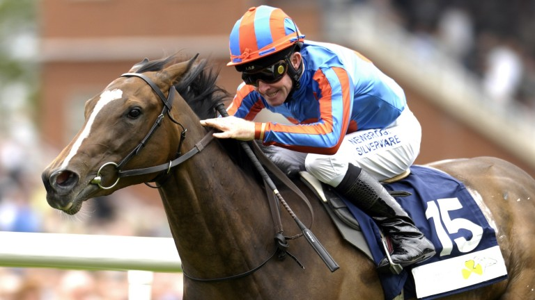 You'resothrilling: dam of Group 1 winners Gleneagles, Marvellous and Happily