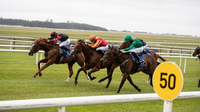 King Of The Throne (black): the mount of Rachael Blackmore in the Irish Derby