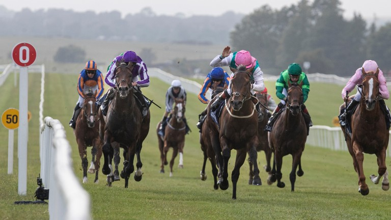 Siskin (pink cap, Colin Keane) produces a brilliant performance in the Irish 2,000 Guineas