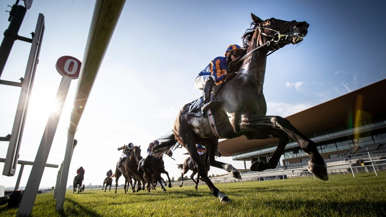 Royal Ascot could be next for Peaceful, despite the quick turn around