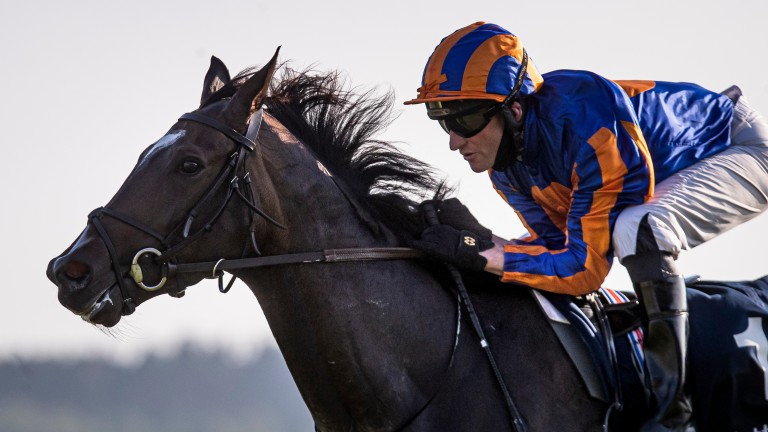 Poetry in motion: Seamie Heffernan and Peaceful glide to Tattersalls Irish 1,000 Guineas victory at the Curragh