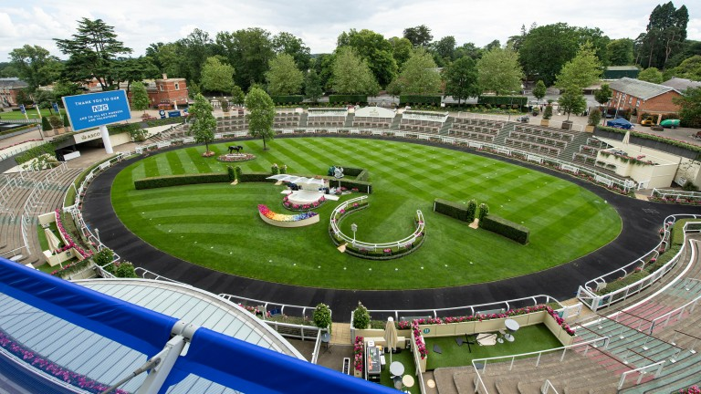 Royal Ascot: stands ready for five days of action without spectators