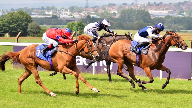The first Listed race of the year at the course is the Pontefract Castle Stakes in June