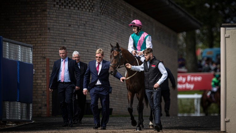Siskin: speculation is rife over who will stand the Irish 2,000 Guineas winner