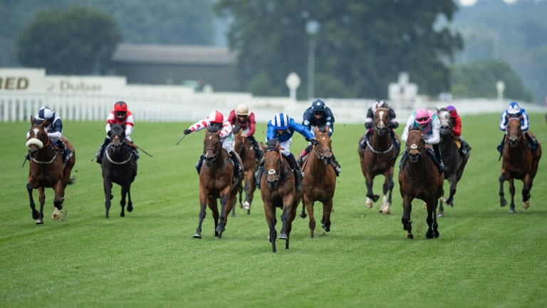Battaash will bid for another King's Stand Stakes