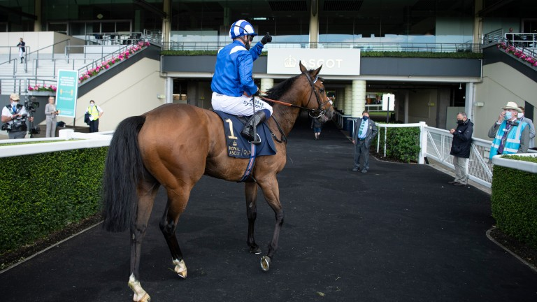 """Jim Crowley on Battaash: """"He's got so much natural talent"""""""