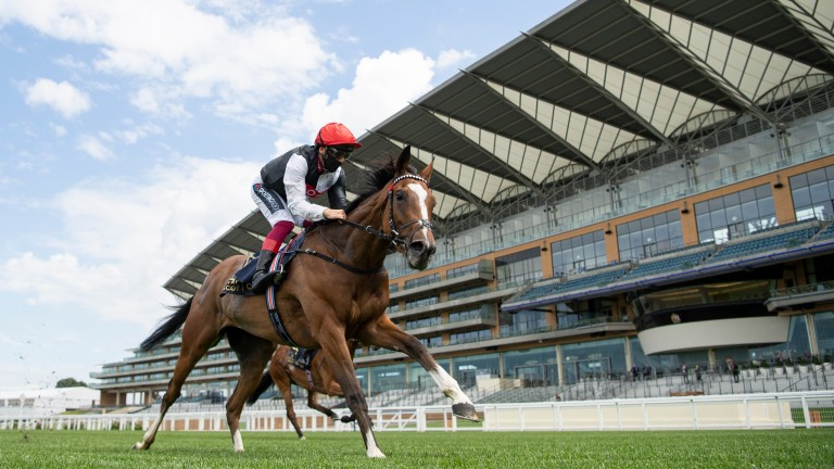 Frankly Darling cruises home in the Ribblesdale Stakes