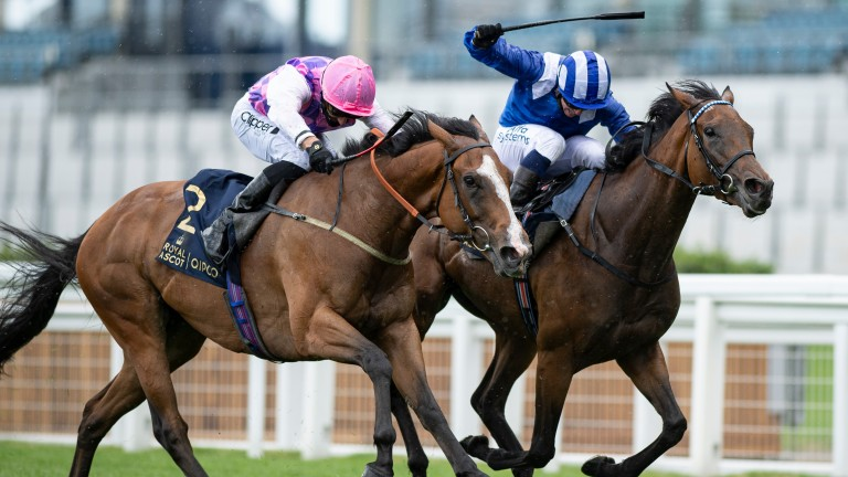 Agincourt (pink cap): pipped by Nazeef in the Duke Of Cambridge Stakes