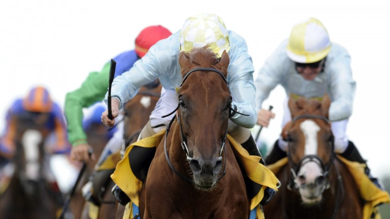 Conduit leads home a one-two for Ballymacoll Stud in the King George VI and Queen Elizabeth Stakes
