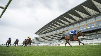 ASCOT, ENGLAND - JUNE 17:  Lord North ridden by James Doyle heads to the finish line to win  the Group 1 Prince Of Wales's Stakes during Day 2 of Royal Ascot at Ascot Racecourse on June 17, 2020 in Ascot, England. (Photo by Edward Whitaker/Pool via Getty