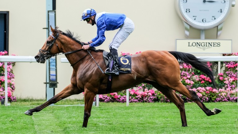 Lord North comes home clear in the Prince Of Wales's Stakes