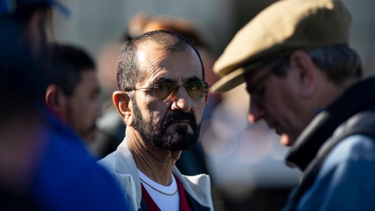 Sheikh Mohammed: bought Stonerside Stable in 2008