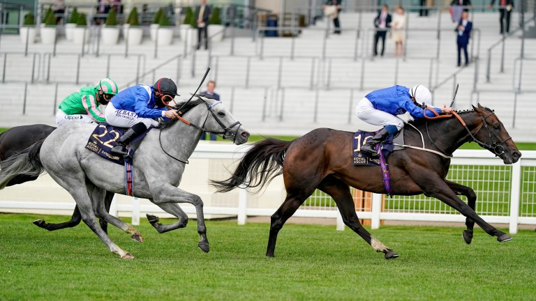 Dark Vision strikes in the Royal Hunt Cup under William Buick