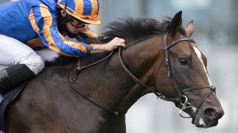 Battleground wins the Listed Chesham Stakes at Royal Ascot