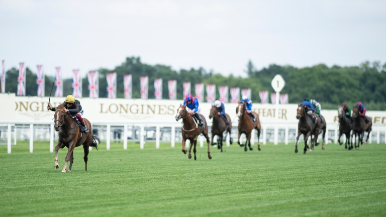 Stradivarius (Frankie Dettori) wins his third Gold Cup, powering clear up the home straight