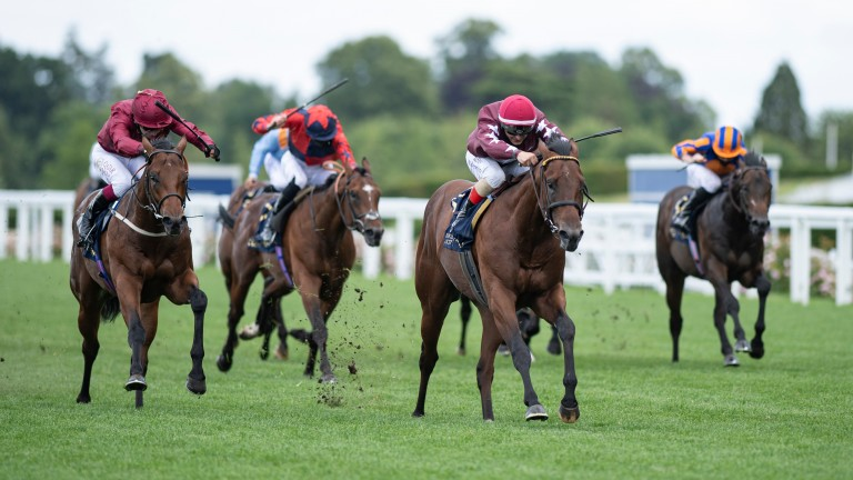 The Lir Jet (left): ran down Golden Pal in the Norfolk Stakes