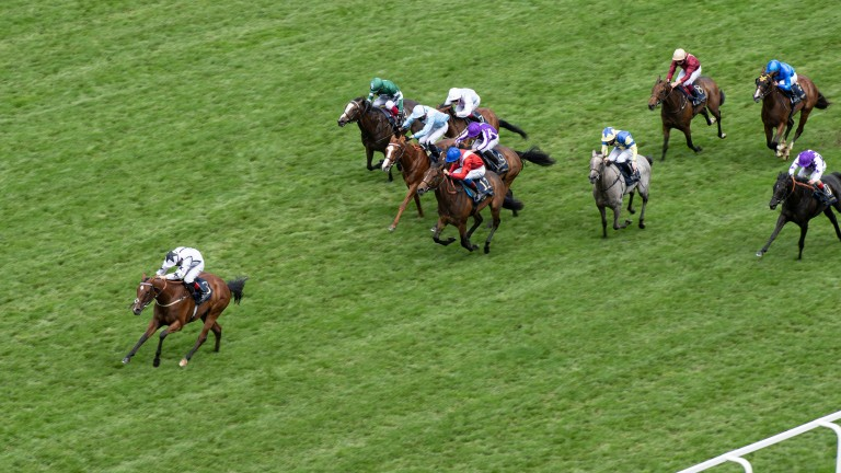 Undertake (red and blue silks) finished fourth to the impressive Dandalla in the Albany Stakes at Royal Ascot