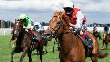 Adam Kirby partners Golden Horde to success in the Commonwealth Cup, a seventh top-level win for the rider