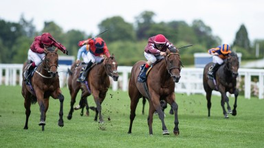 The Lir Jet (Oisin Murphy,left) collars Golden Pal in the shadow of the winning post and win the Norfolk StakesAscot 19.6.20 Pic: Edward Whitaker/Racing Post