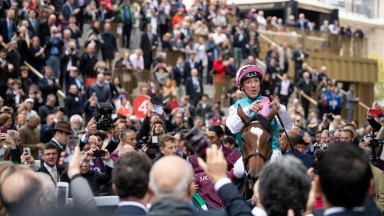Crowded out: French racecourses will reopen their doors to the paying public from July 11, while a 5,000 person limit is due to be removed in September