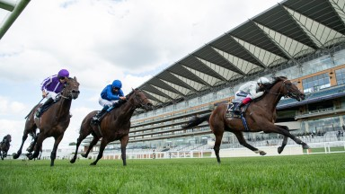 Palace Pier (Frankie Dettori,right) beats Pinatubo (centre) and Wichita to win the St James's Palace StakesAscot 20.6.20 Pic: Edward Whitaker