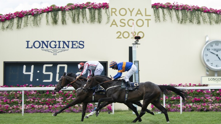 First and second in 2020, Who Dares Wins and The Grand Visir are both back for more