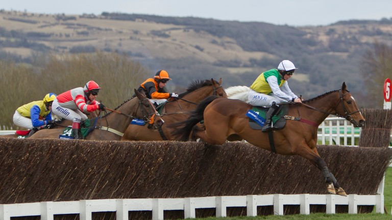 Liam Treadwell and Carrickboy on their way to winning the Byrne Group Plate at the Cheltenham Festival in 2013