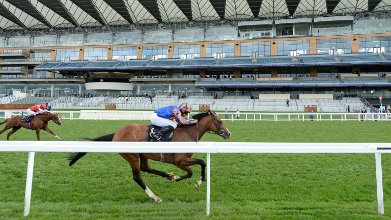 Santiago: Royal Ascot and Irish Derby ace will be a formidable opponent in the St Leger