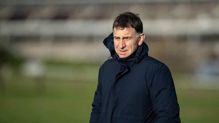 Henry de Bromhead: up and running for the week at Galway after Annie G landed the novice hurdle
