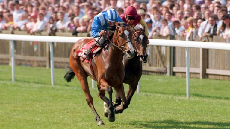 Salsabil: winner of the 1990 1,000 Guineas