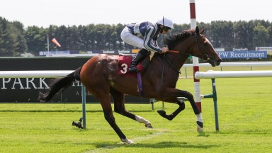 HIGHEST GROUND and Ryan Moore win at Haydock Park 24/6/20Photograph by Grossick Racing Photography 0771 046 1723