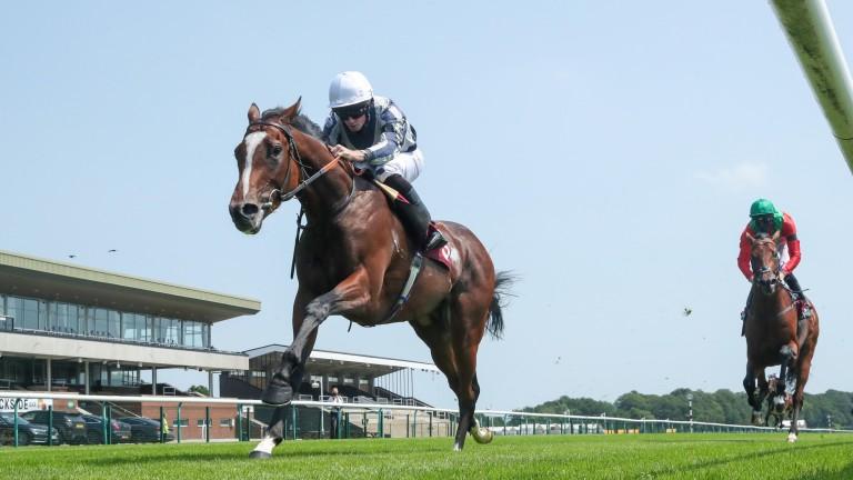 Highest Ground (Ryan Moore) leaves the odds-on Waldkonig trailing at Haydock