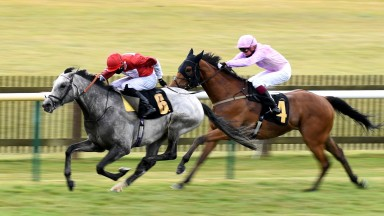 Holy Kingdom (left) beats Severance on the Rowley Mile last month
