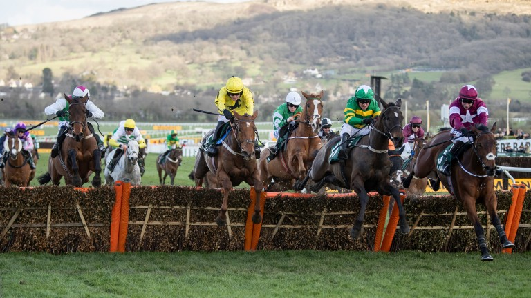 The County Hurdle will now be sponsored by West Midlands-based company McCoy Contractors