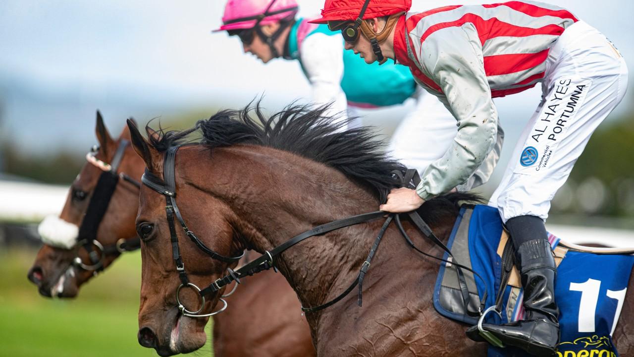 Irish derby 2021 bettingadvice compare betting lines