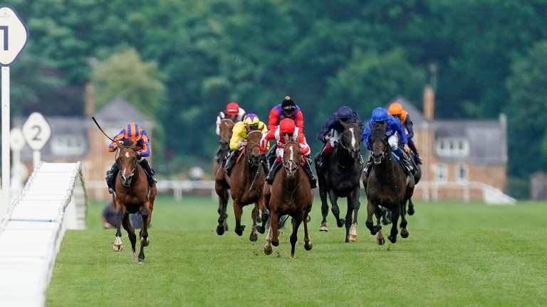 Santiago (left), heading for home in the Queen's Vase, runs in the Irish Derby on Saturday