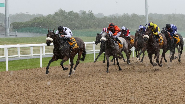 Judicial: wins the Chipchase Stakes in the pouring rain at Newcastle