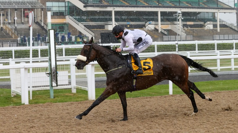 JUDICIAL (Callum Rodriguez) wins at NEWCASTLE 27/6/20Photograph by Grossick Racing Photography 0771 046 1723