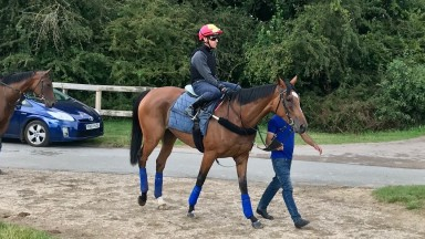 Enable and Frankie Dettori head to the Al Bahathri on Wednesday morning