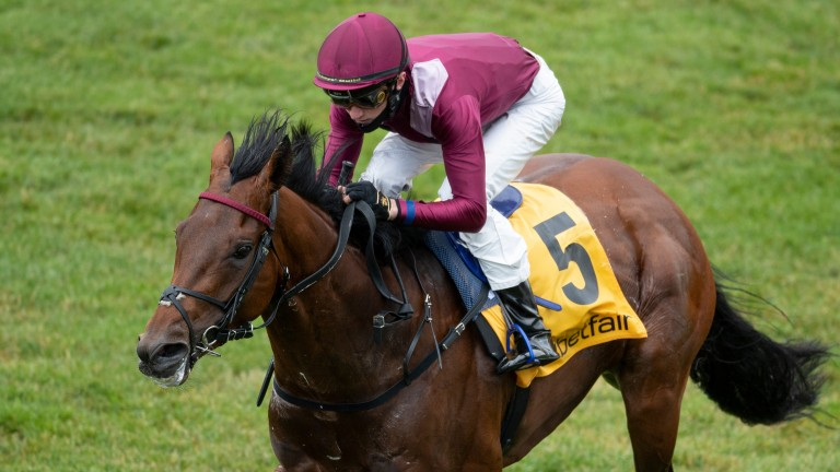 Mishriff will be ridden by Ioritz Mendizabal at in the Prix du Jockey Club at Chantilly on Sunday