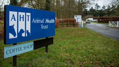 The Animal Health Trust is to begin a winding-up process