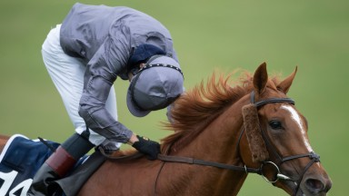 Serpentine finished a long way clear but where did your horse finish in the Derby?