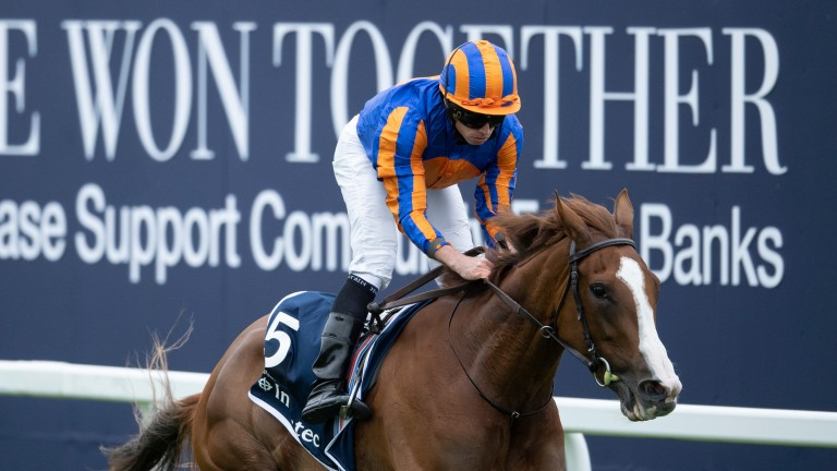 Dual Classic winner Love reappears in the feature Group 1 Prince of Wales's Stakes